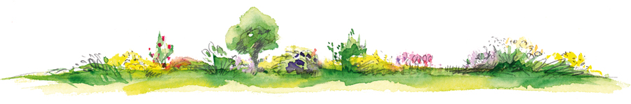Garten_Illu_900px